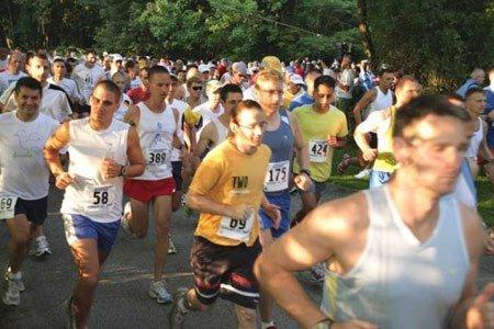 thestartmarathon450.jpg