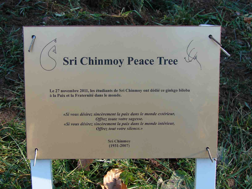 La plaque du Sri Chinmoy Peace Tree au pied du Ginkgo Biloba